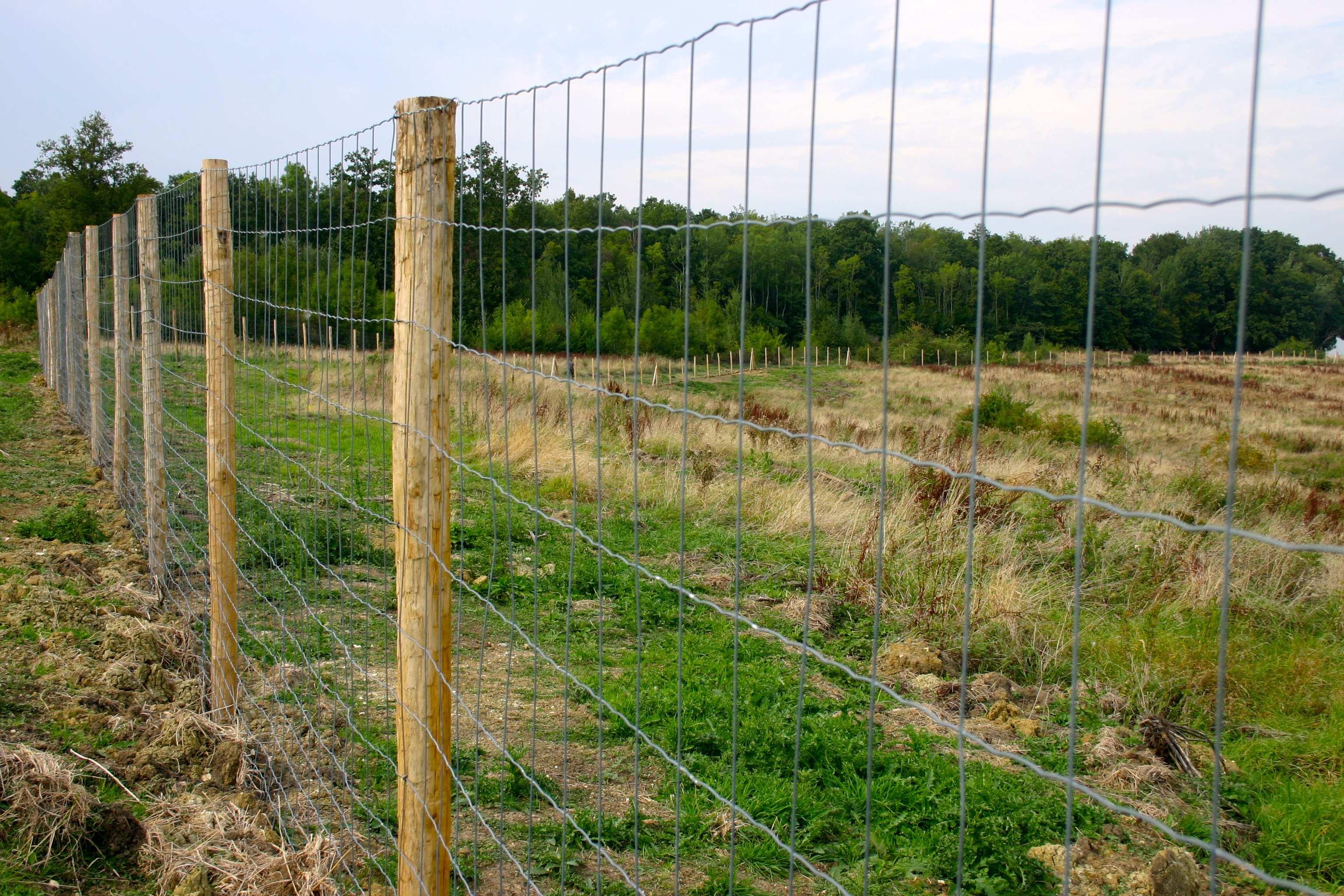 Pose De Cloture Ille Et Vilaine clotures agricole pour animaux & exploitations à rennes